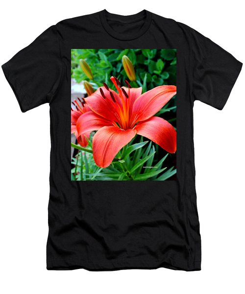 Andrea's Lily Men's T-Shirt (Athletic Fit)
