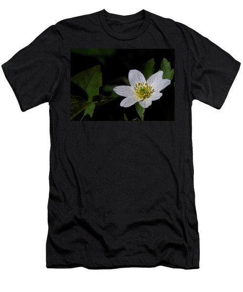 Anemone Nemorosa  By Leif Sohlman Men's T-Shirt (Athletic Fit)