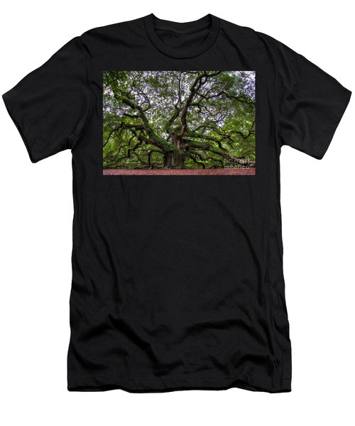 Angel Oak Tree Men's T-Shirt (Athletic Fit)