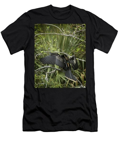 Anhinga Papa Men's T-Shirt (Slim Fit) by Phill Doherty