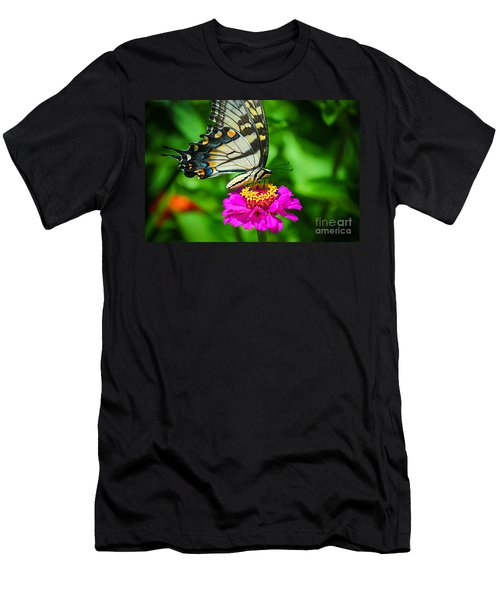 Anise  Swallowtail Butterfly Men's T-Shirt (Athletic Fit)