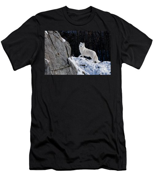 Men's T-Shirt (Slim Fit) featuring the photograph Arctic Wolf On Rock Cliff by Wolves Only
