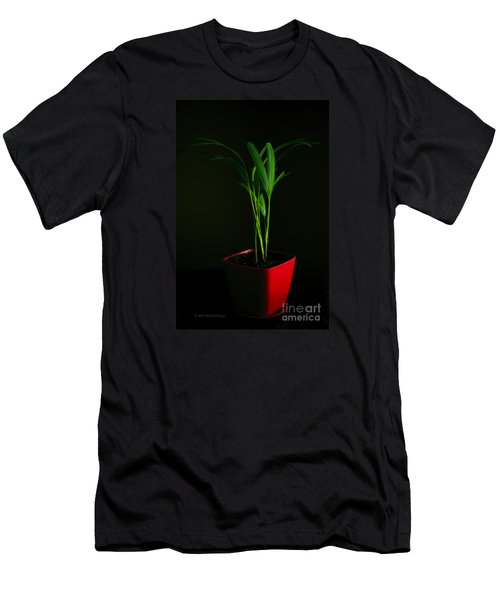 Areca Palm Men's T-Shirt (Athletic Fit)