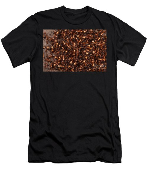 Army Ants Men's T-Shirt (Slim Fit) by Art Wolfe