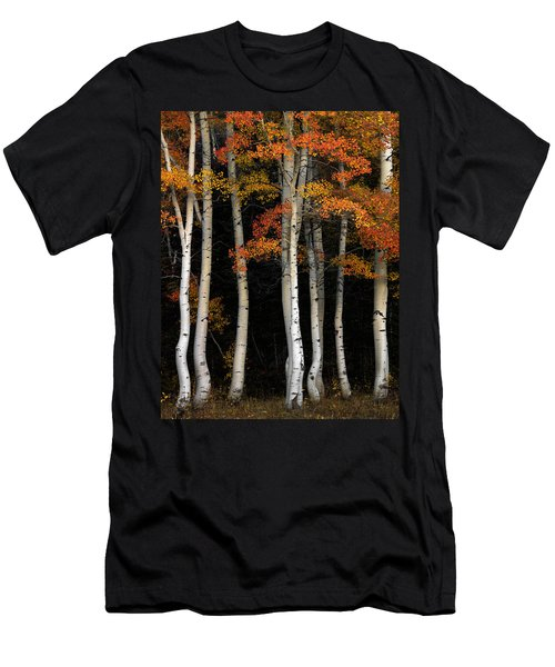 Aspen Contrast Men's T-Shirt (Athletic Fit)