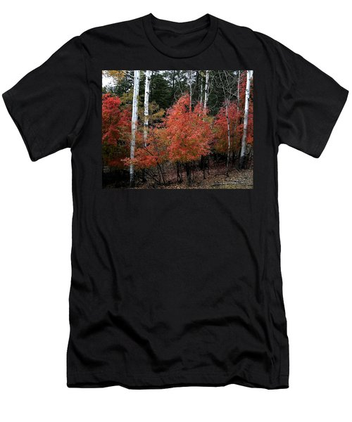 Aspen Glory Men's T-Shirt (Athletic Fit)