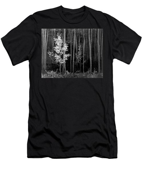 Aspens Northern New Mexico Men's T-Shirt (Slim Fit) by Ansel Adams
