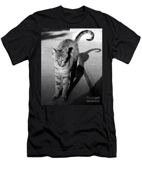 Aswan Cat Men's T-Shirt (Athletic Fit)