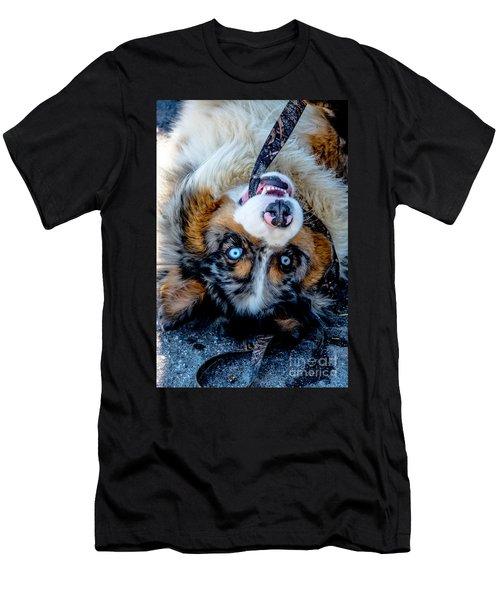 Australian Shepherd Men's T-Shirt (Slim Fit) by Cheryl Baxter