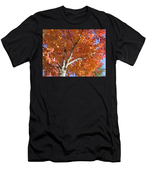 Autumn Aspen Men's T-Shirt (Athletic Fit)