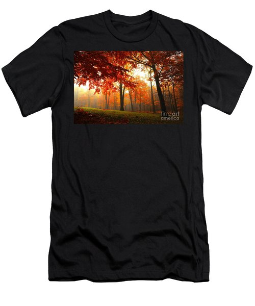 Autumn Canopy Men's T-Shirt (Athletic Fit)