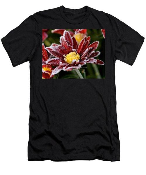 Autumn Frost Men's T-Shirt (Slim Fit) by Tiffany Erdman
