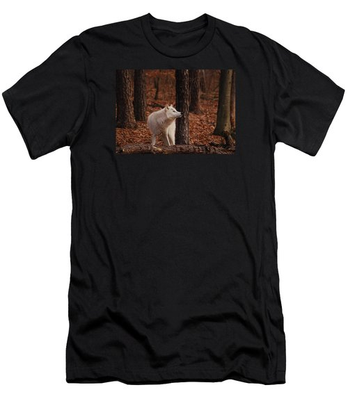 Autumn Gaze Men's T-Shirt (Slim Fit) by Lori Tambakis