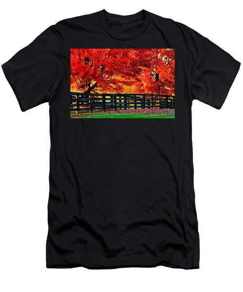 Autumn Kentucky Maples Men's T-Shirt (Athletic Fit)