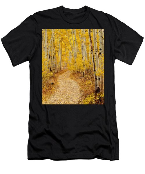 Autumn Road Men's T-Shirt (Athletic Fit)