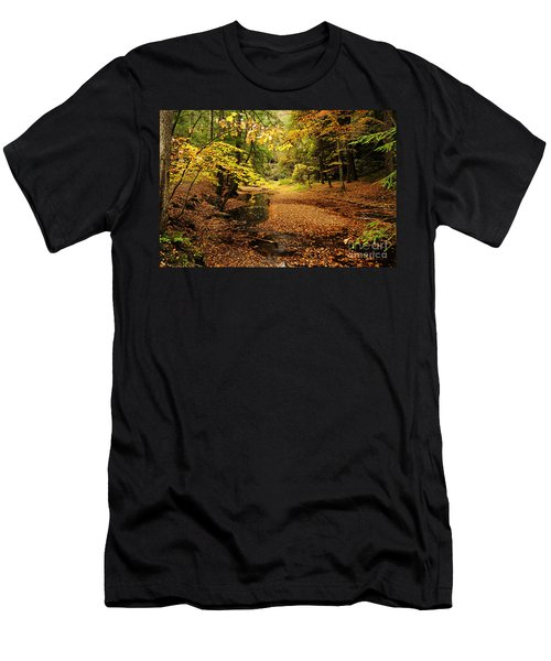 Autumn Stream Men's T-Shirt (Athletic Fit)