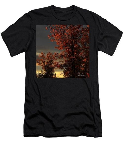 Autumn's First Light Men's T-Shirt (Slim Fit) by James Eddy