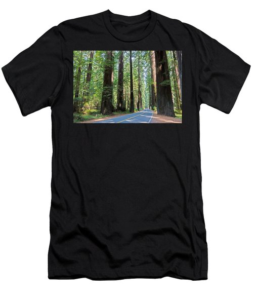 Avenue Of The Giants Men's T-Shirt (Athletic Fit)