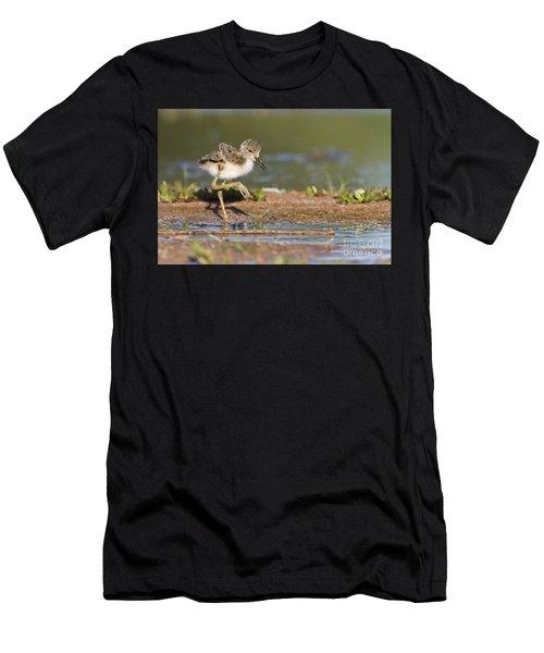 Baby Black-necked Stilt Exploring Men's T-Shirt (Athletic Fit)