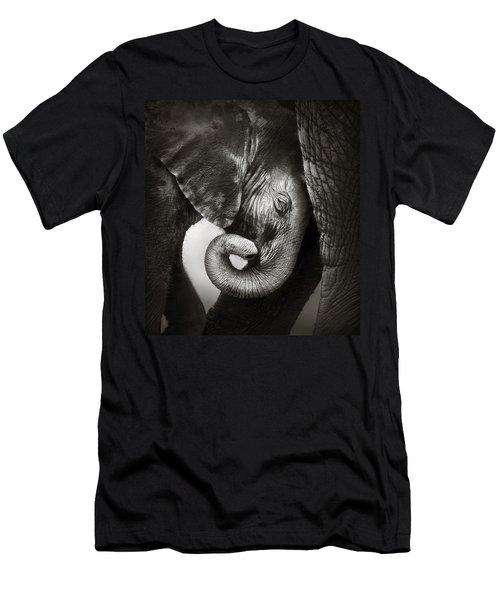 Baby Elephant Seeking Comfort Men's T-Shirt (Slim Fit) by Johan Swanepoel