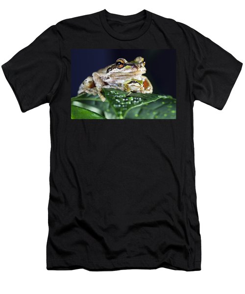 Baby Frog And Mama Frog Men's T-Shirt (Athletic Fit)