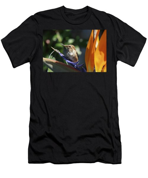 Baby Hummingbird On Flower Men's T-Shirt (Athletic Fit)