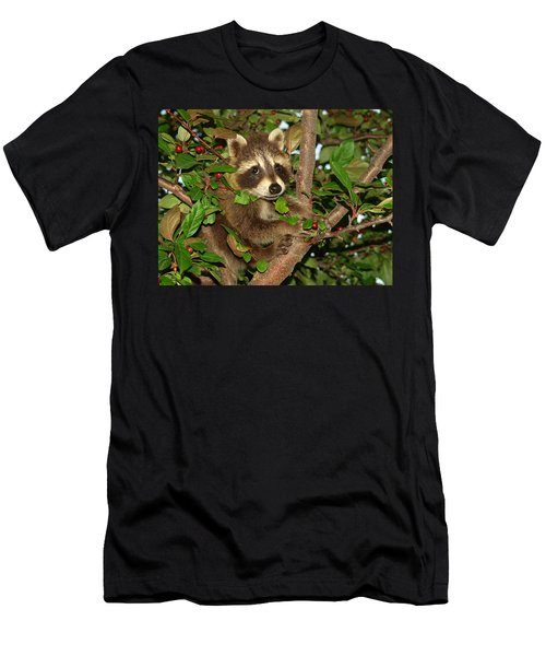 Men's T-Shirt (Athletic Fit) featuring the photograph Baby Raccoon by James Peterson