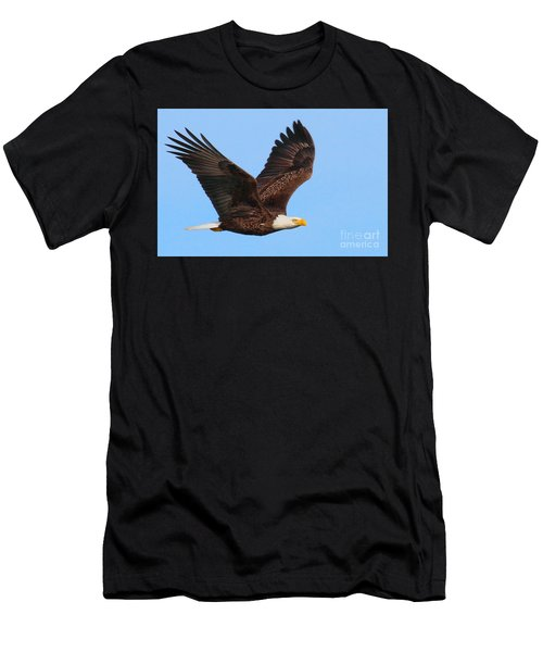 Bald Eagle In Flight Men's T-Shirt (Athletic Fit)