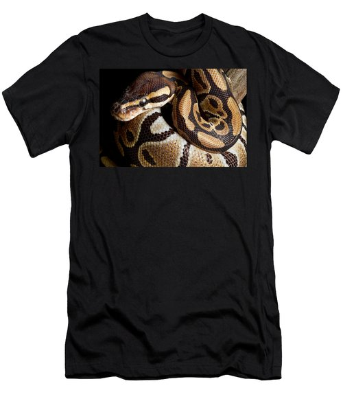 Men's T-Shirt (Slim Fit) featuring the photograph Ball Python Python Regius by David Kenny