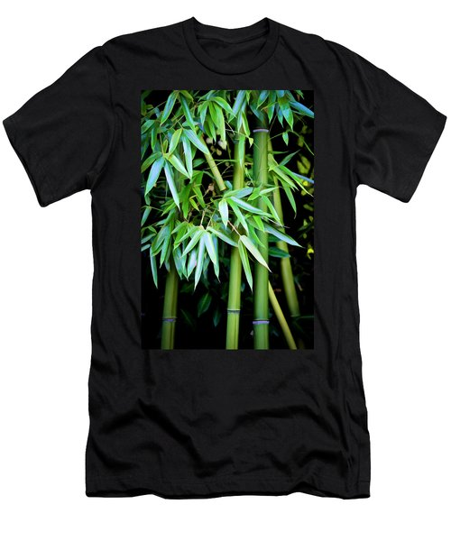 Bamboo Trees II Men's T-Shirt (Athletic Fit)