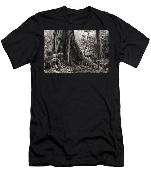 Strangler Fig And Cypress Tree Men's T-Shirt (Athletic Fit)