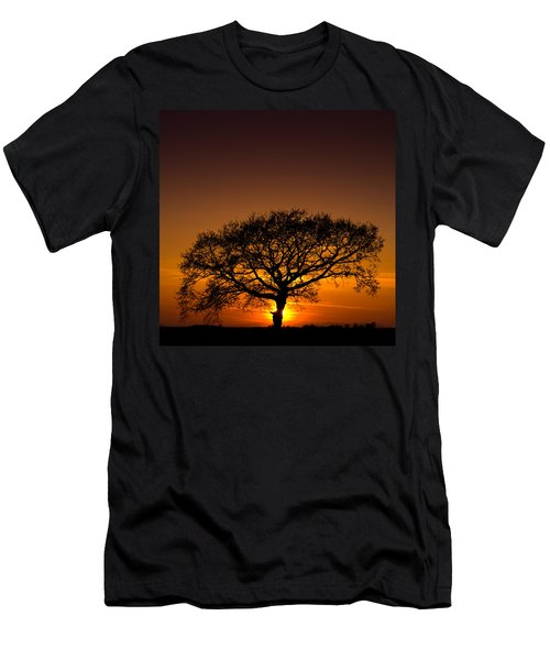 Baobab Men's T-Shirt (Slim Fit) by Davorin Mance