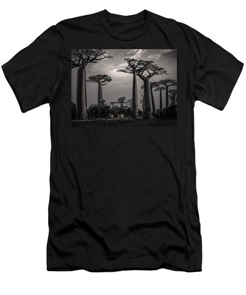 Baobab Highway Men's T-Shirt (Athletic Fit)