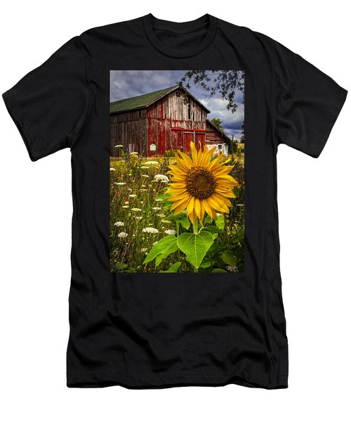 Barn Meadow Flowers Men's T-Shirt (Athletic Fit)