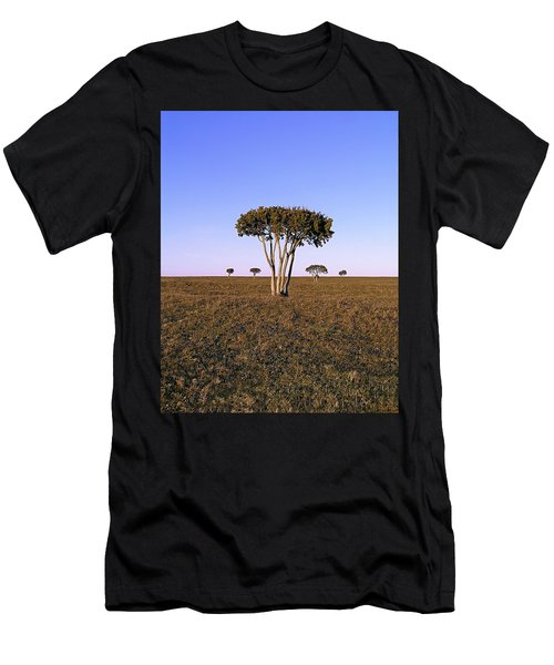 Barren Tree Men's T-Shirt (Athletic Fit)