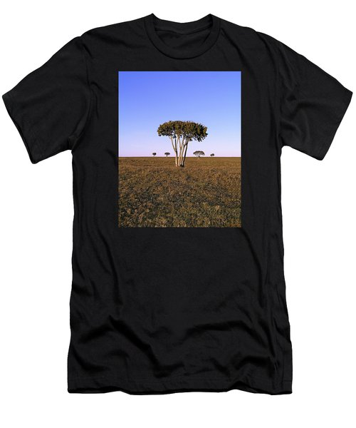 Barren Tree Men's T-Shirt (Athletic Fit)