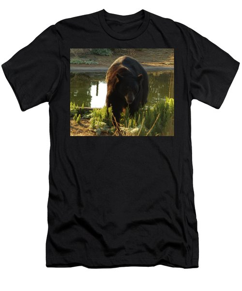 Bear 1 Men's T-Shirt (Athletic Fit)