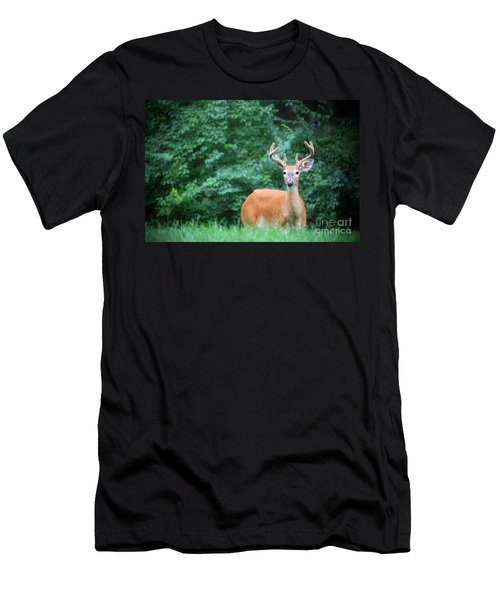 Beautiful Buck  Men's T-Shirt (Athletic Fit)