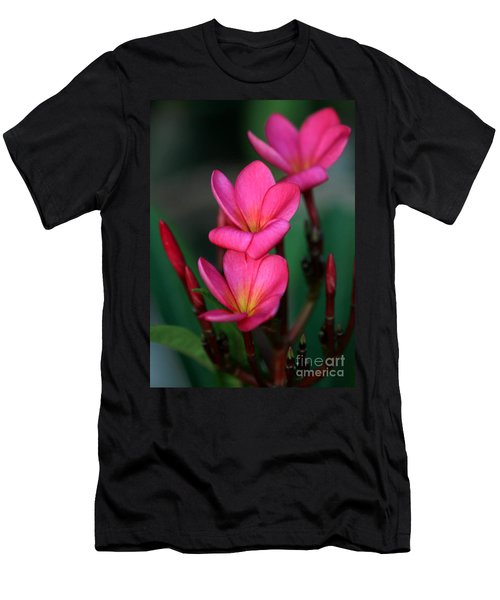 Beautiful Red Plumeria Men's T-Shirt (Athletic Fit)