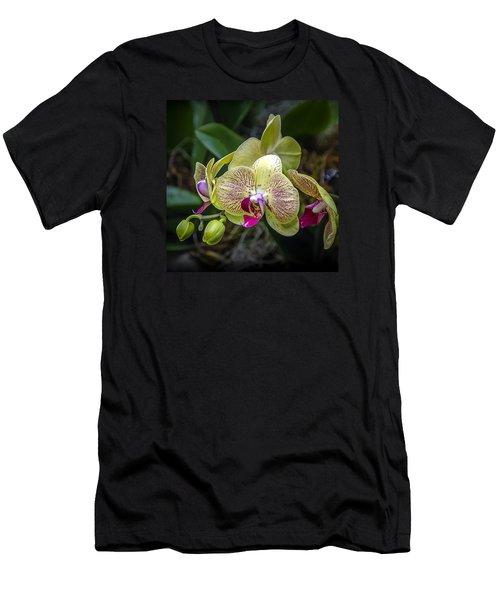 Beauty Of Orchids 3 Men's T-Shirt (Athletic Fit)