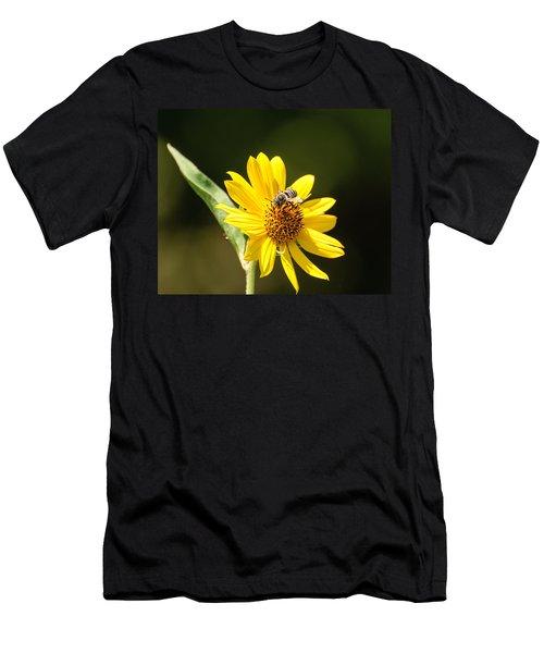Bee Flower Men's T-Shirt (Athletic Fit)