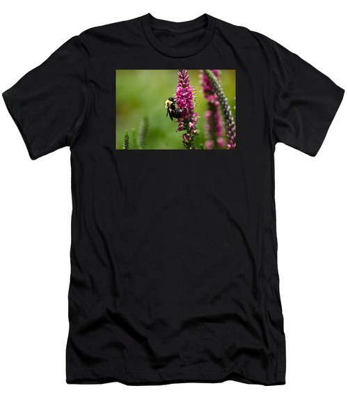 Bee Heaven Men's T-Shirt (Athletic Fit)