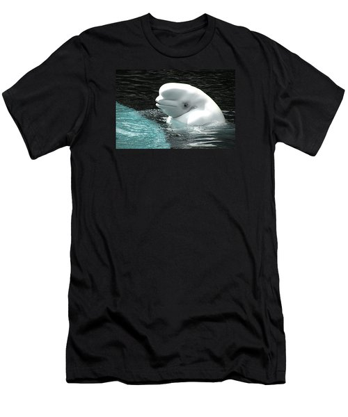 Beluga Whale Men's T-Shirt (Slim Fit) by Brian Chase
