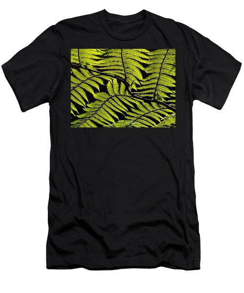 Bent Fern Men's T-Shirt (Athletic Fit)