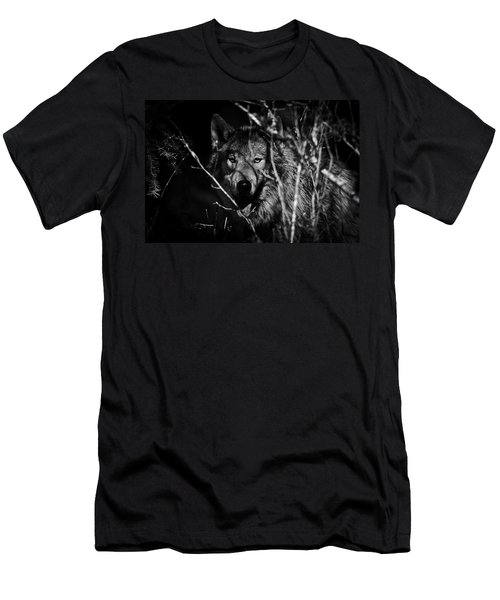 Beware The Woods Men's T-Shirt (Slim Fit) by Wes and Dotty Weber