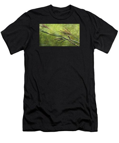 Big Bluestem In Bloom Men's T-Shirt (Athletic Fit)