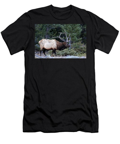Big Boy Men's T-Shirt (Athletic Fit)