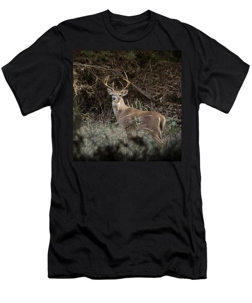 Big Buck Men's T-Shirt (Athletic Fit)