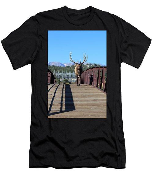 Big Bull On The Bridge Men's T-Shirt (Athletic Fit)