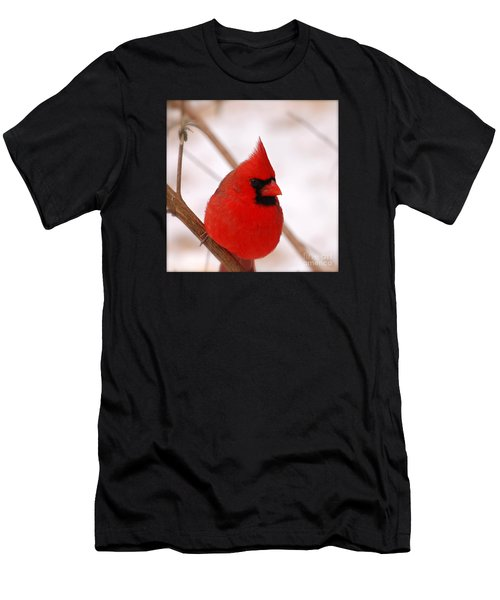 Big Red  Cardinal Bird In Snow Men's T-Shirt (Athletic Fit)